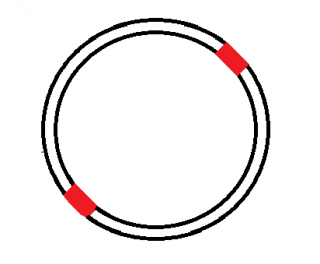 photo diagonalribbon.png