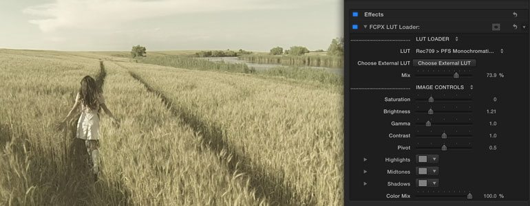Professional - Color Grading LUT Presets for Final Cut Pro X