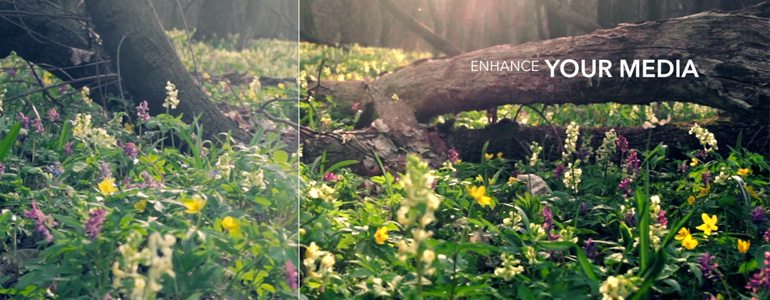 Professional - Image Adjustment Tools for Final Cut Pro X