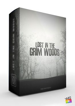 Lost in the Grim Woods