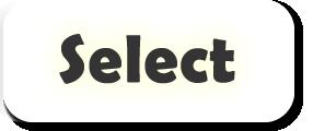 selectTeam