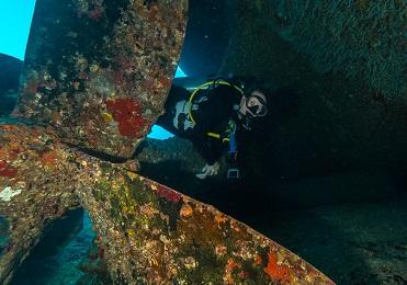 2 Tank Certified Wreck & Reef Dive (Long Distance) image 2