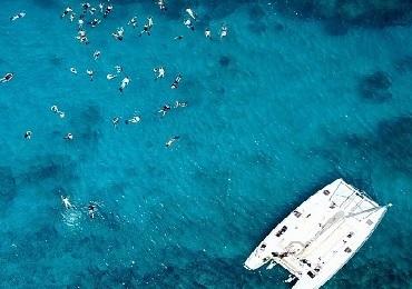 Product Snorkel Turtle Canyon Adventure Sail- Waikiki