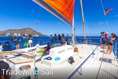 Tradewind Sail- Waikiki image 3