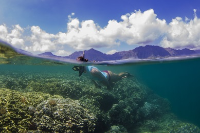 Holokai Kayak and Snorkel Adventure 3hrs image 3