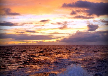 Sunset Snorkel (Oct - Mar) image 2