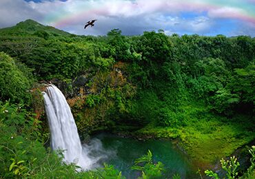 Kauai - Hawaii Movie Tours