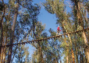 Product Zipline Slopes of  Haleakala 5 Lines