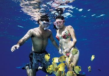 West Maui Snorkel image 2