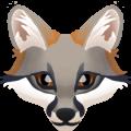 :grey_fox: