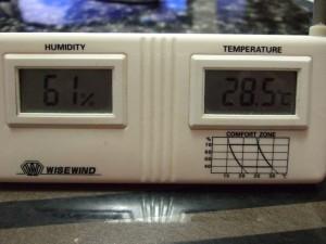 28℃越え