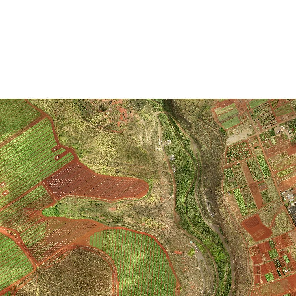 Tiled High Resolution Orthoimagery (HRO)