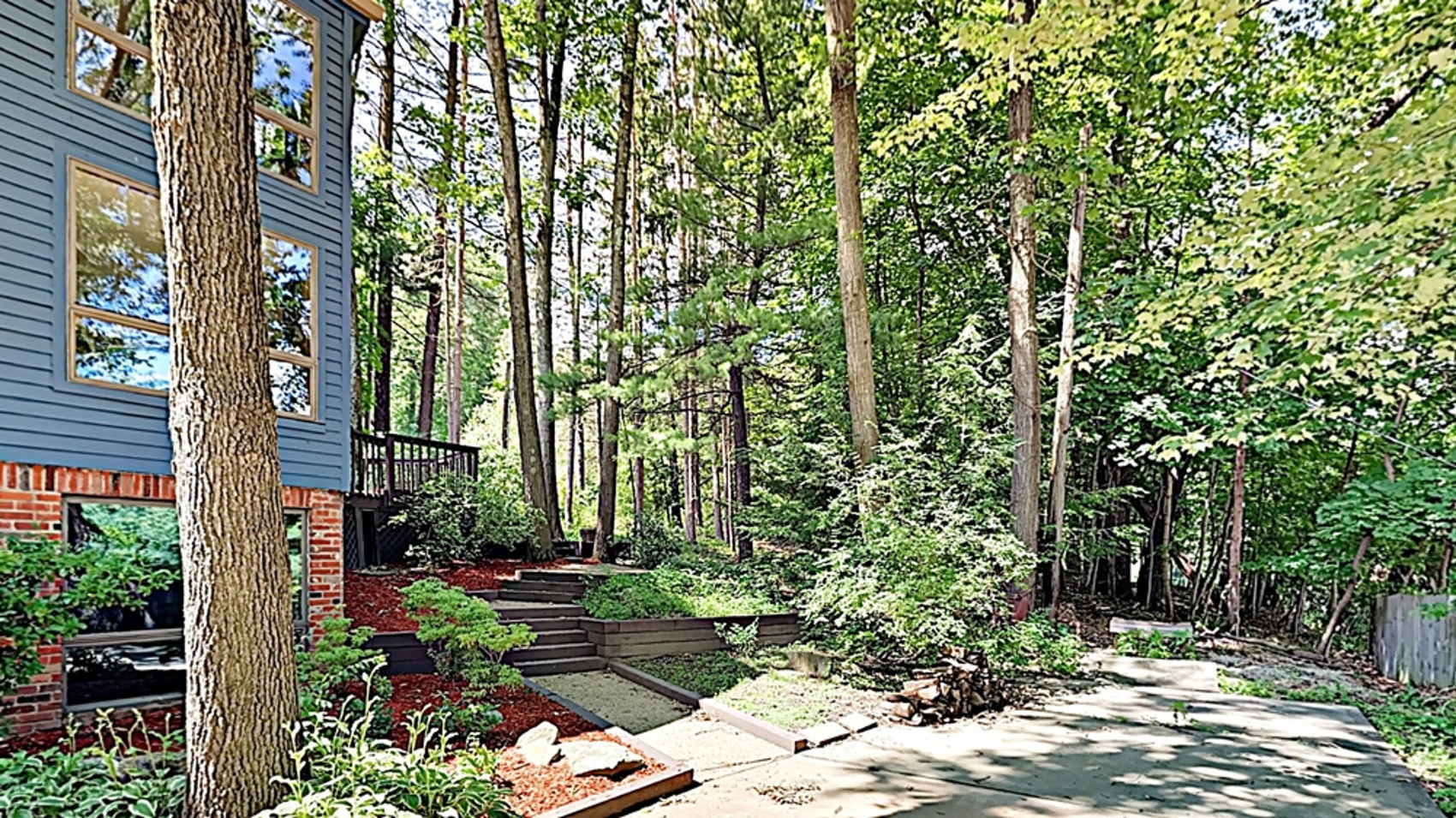 Wooded Rear Yard