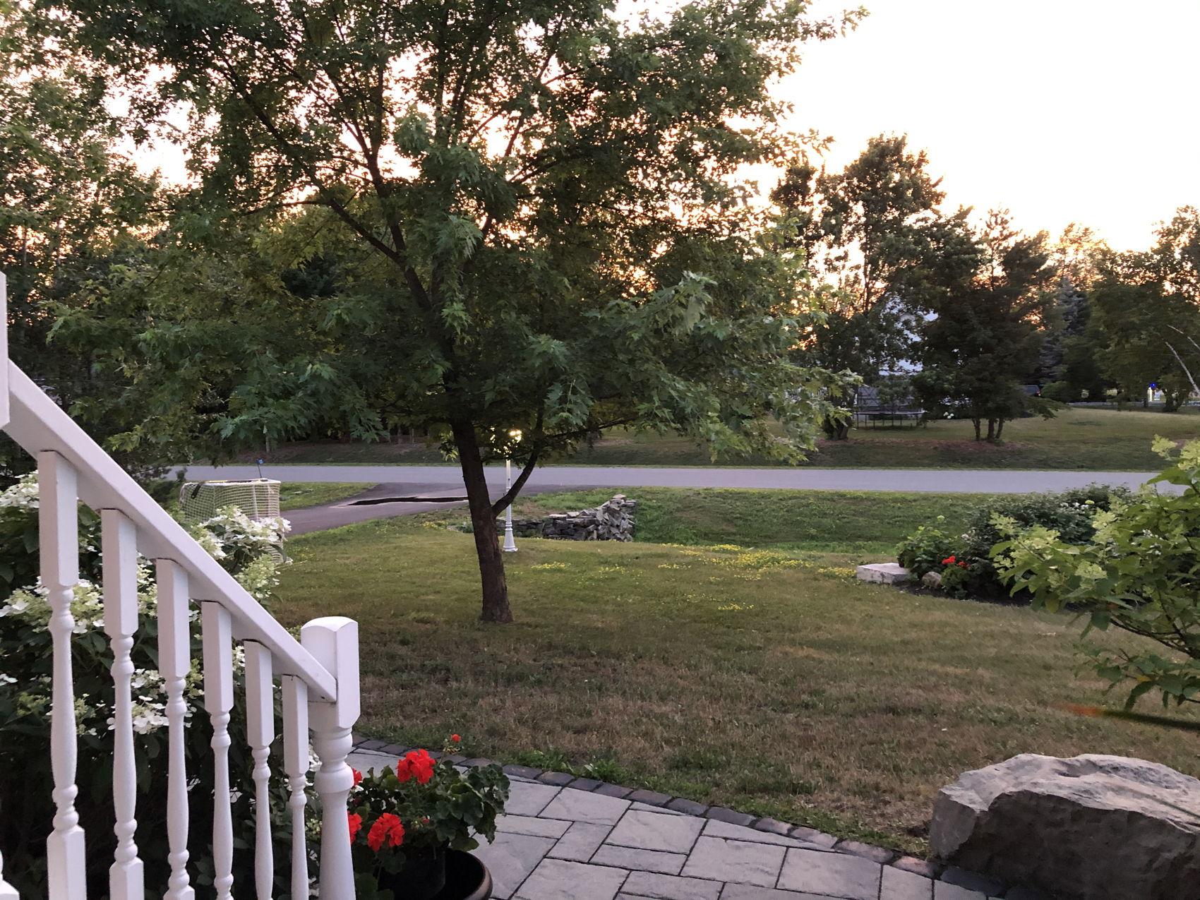 13 Emily Lauren Sunset Pic 3.jpg