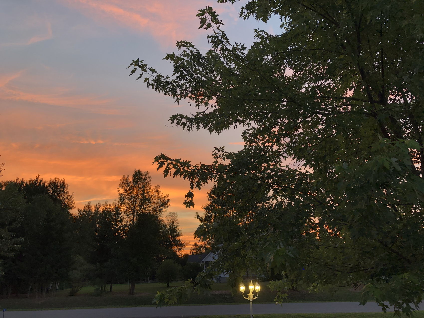 13 Emily Lauren Sunset Pic 4.jpg