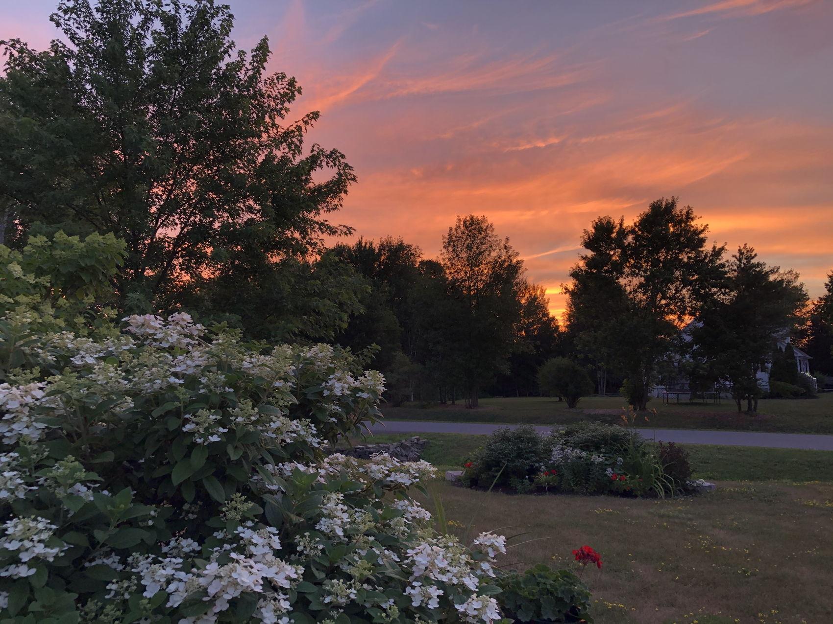 13 Emily Lauren Sunset Pic 5.jpg