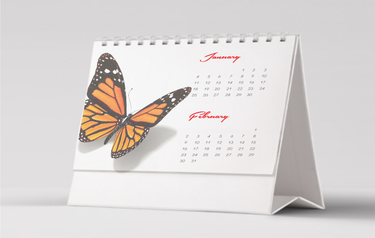 Calendar Design Nigeria : Design and print business cards flyers online in nigeria