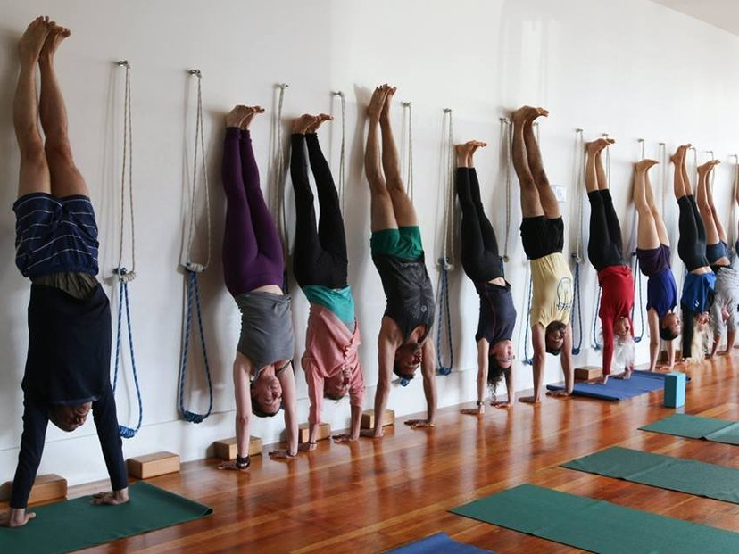 Iyengar Yoga Institute Of San Francisco In San Francisco Ca Us Mindbody