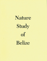 Nature study of belize
