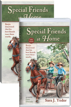 Special friends at home cassette book set