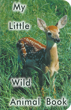 My little wild animal book