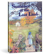 Summer of the lost limb