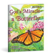 God's miracle  a butterfly
