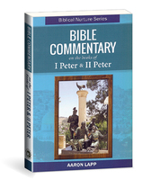 Bible commentary on the books of i peter   ii peter