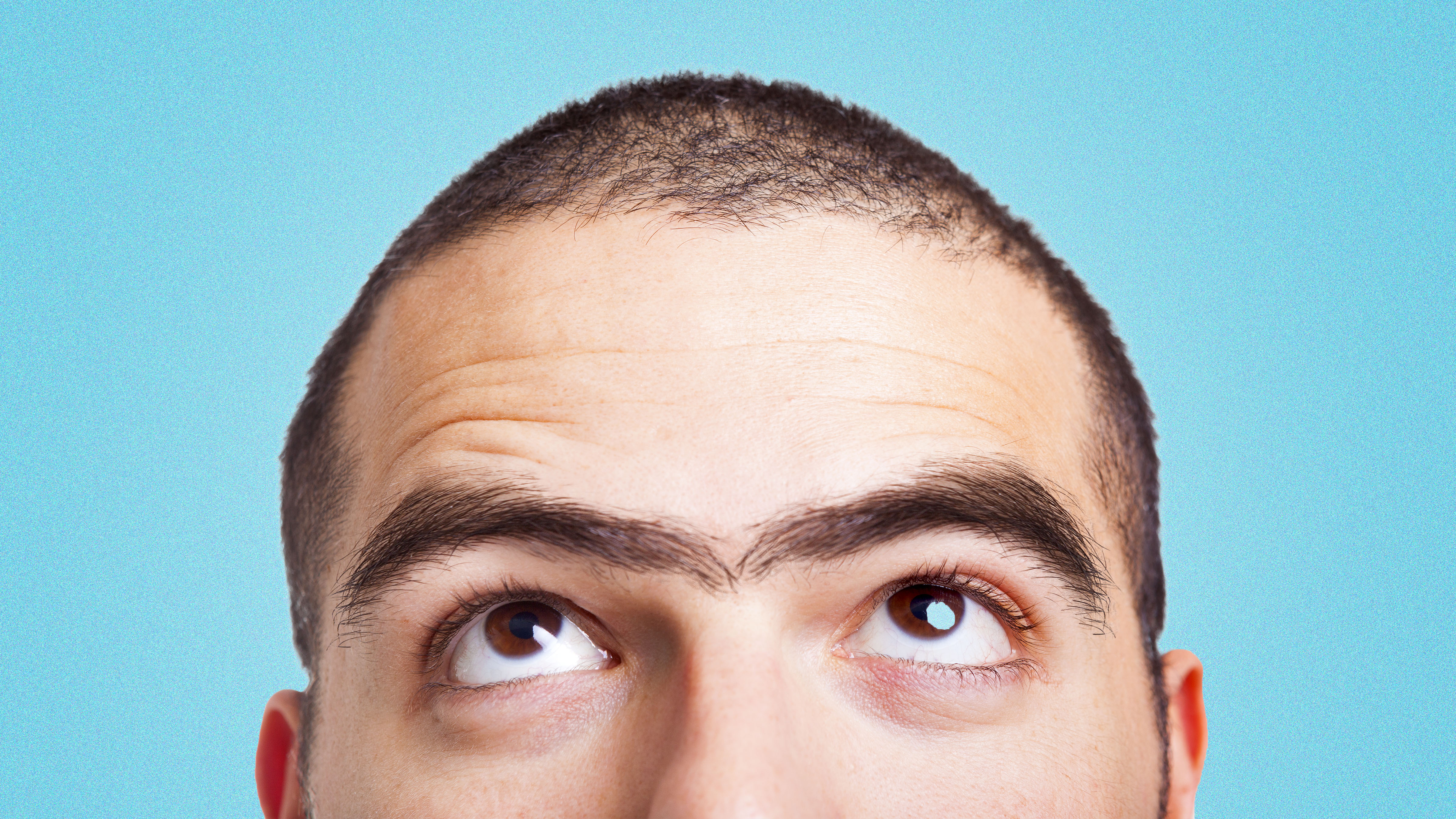 The Unsettling Science Of Unibrows Dollar Shave Club