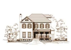 Southern-Colonial Style Home Design Plan: 19-428