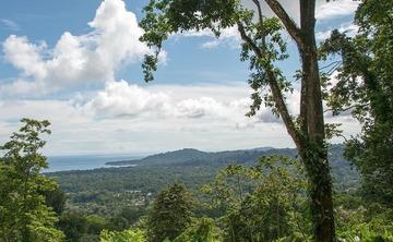 Grace in Nature A Women's Yoga Retreat to Costa Rica