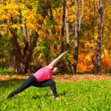 Autumn Recharge | Yoga & Wellness | 2 day