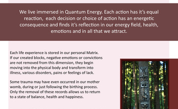 Quantum Plexus Bio Energy Therapy 3 Day Training & Retreat
