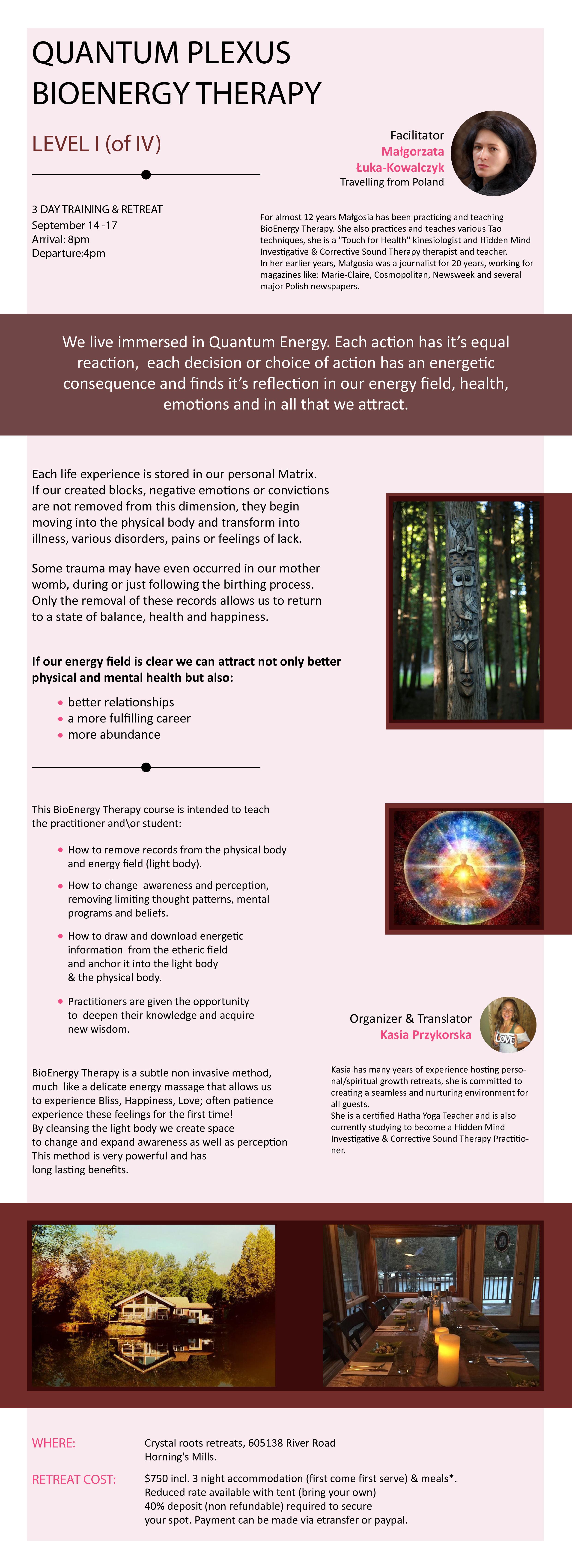 Quantum Plexus Bio Energy Therapy 3 Day Training Amp Retreat