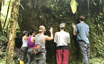 12 Day Ayahuasca and Plant Medicine Retreat in the Upper Amazon II