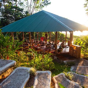 Align to Shine: Jungle Adventure Yoga Retreat