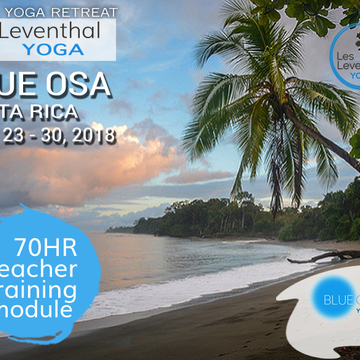 70HR MODULE / IMMERSION at BLUE OSA RETREAT Osa Peninsula, Costa Rica