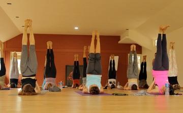 28 days Hatha Yoga Teacher Training - December 2017 Mysore India