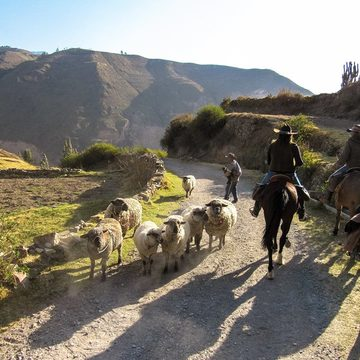 SHAMANIC HORSEBACK EXCURSION - COLCA CANYON, PERU