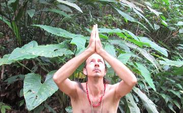 7-14 DAY AYAHUASCA RETREAT FOR MEN & WOMEN
