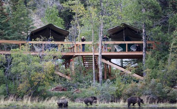 Bear Camp – 5 day Bear Viewing