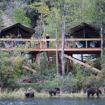 Bear Camp – 5 day Bear Viewing
