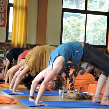 500 Hours Hatha Yoga Teacher Training Course in Rishikesh, India