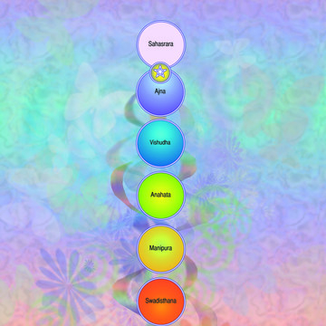 Working with our Chakras and Spiritual Anatomy – Part of the Raja Yoga Series