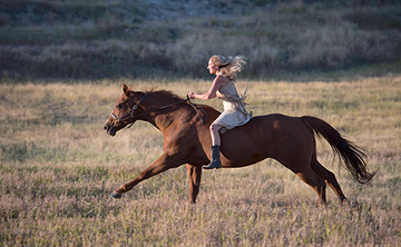 Become Unbridled- A Women's Equine Retreat