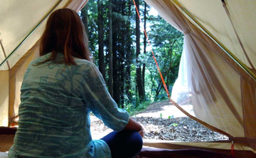 Woodland Retreat: Nature Connection for Women – 3 nights