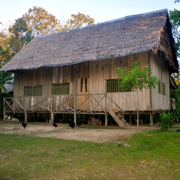 Mamaycuna Traditional Amazonian Healing Center