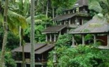 Divine Bali Bliss retreat
