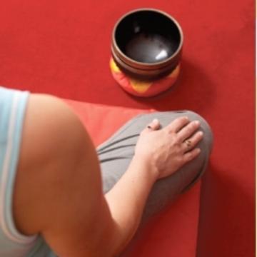 Awakened Heart – Shambhala Training Level IV