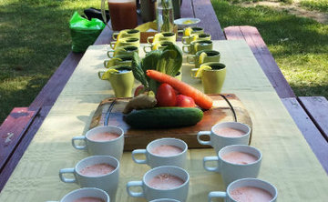 Juice Fasting Retreat Copy